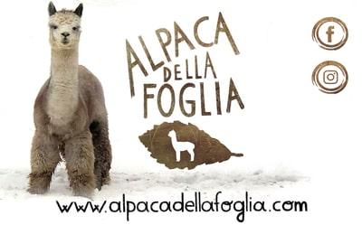 Alpaca - Società Italiana Alpaca