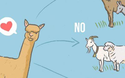 L'Alpaca e convivenza con altri animali