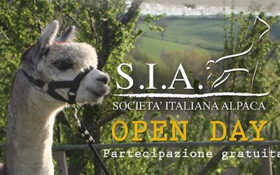 Open Day – Ca' Puldera – Forlì
