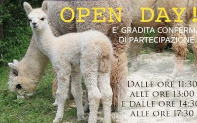 Open Day – Alpaca di Marano – Ziano Piacentino